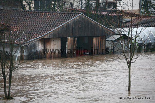 rzav poplava 33